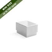 Plain Rigid Box for 160 Micro Cards