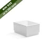 Plain Rigid Box for 260 Micro Cards